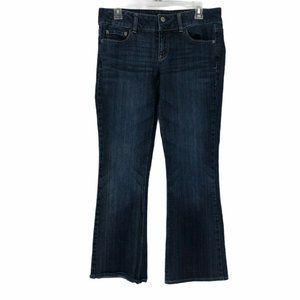 A.E.O Womens Stretch Regular Artist Jeans Size 6